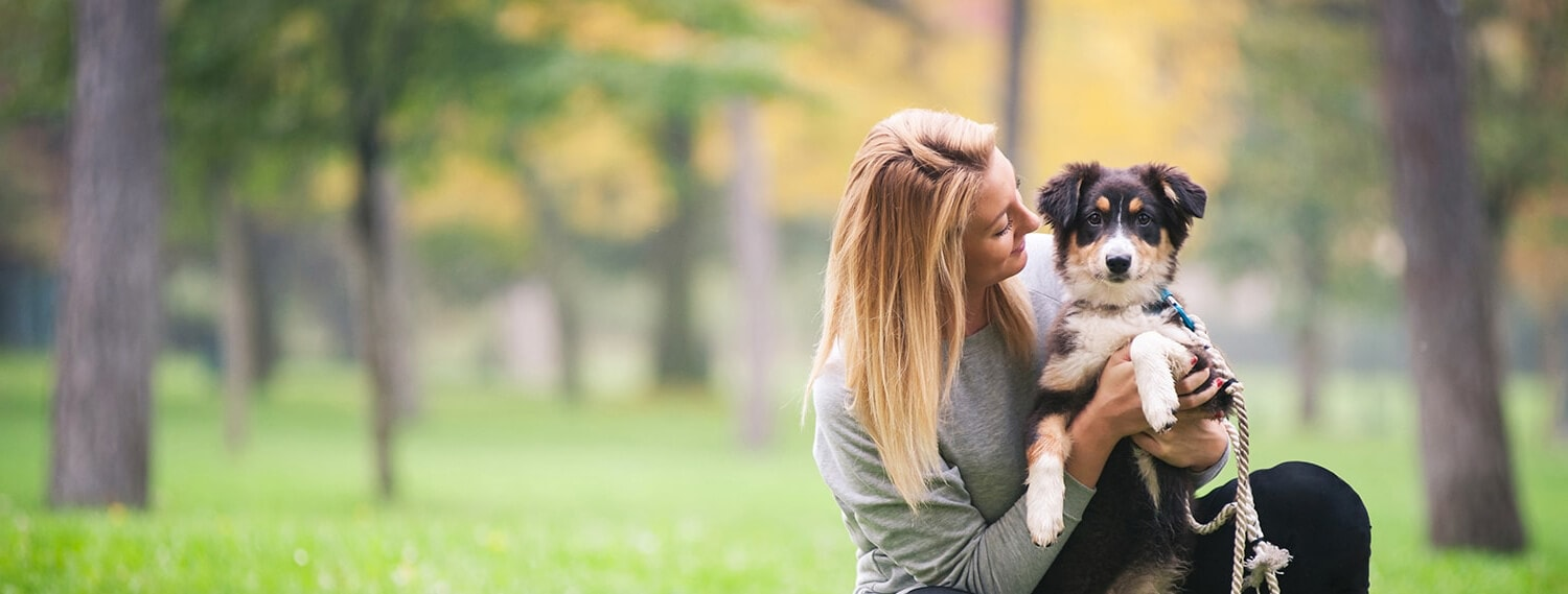 Pet Sitting and Dog Boarding with Trusted Sitters | Pawshake