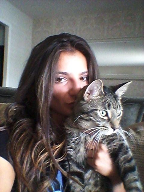 Puus Cat Of Pet Parent Andrea Pawshake