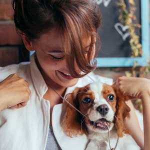 Best Home dog boarding in your neighbourhood