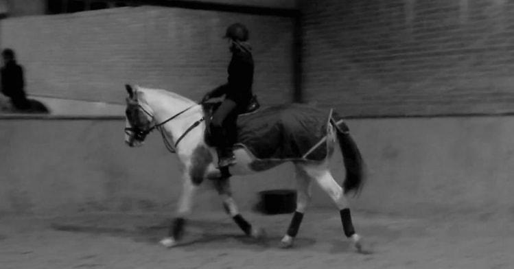 Yaiza in Tervuren back image