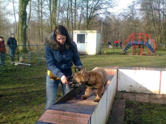 Lisa in Begijnendijk back image