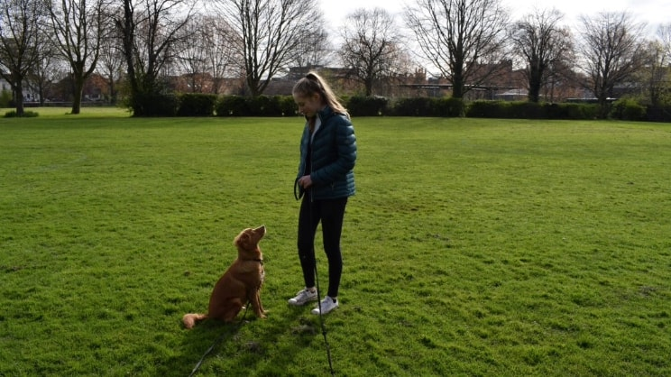 Amy in Shrewsbury back image