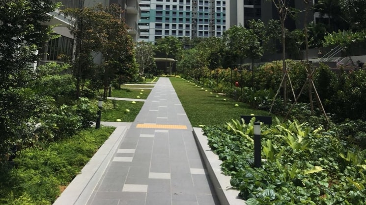 ben in Singapore back image