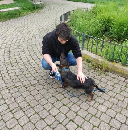 Alex in Wien back image