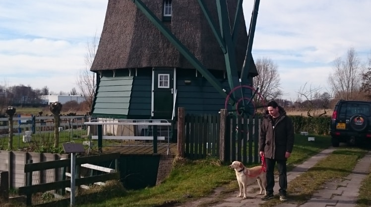 Maries in Haarlem back image