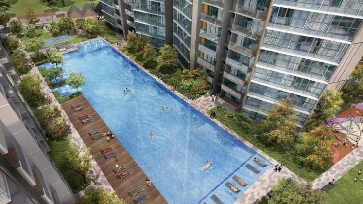 Shona in Singapore back image