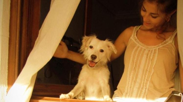 Freya in Paris back image