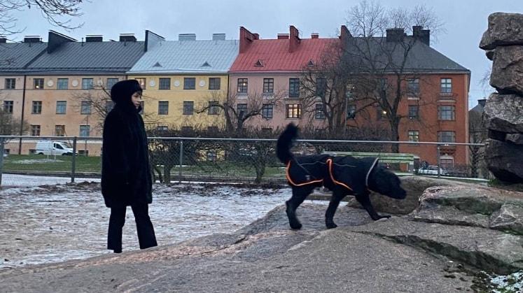 Wiliina - Helsinki back image