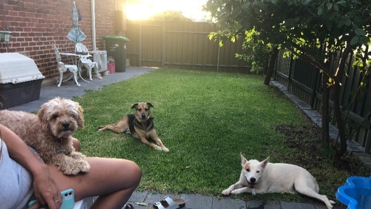 Chloe in Adelaide back image