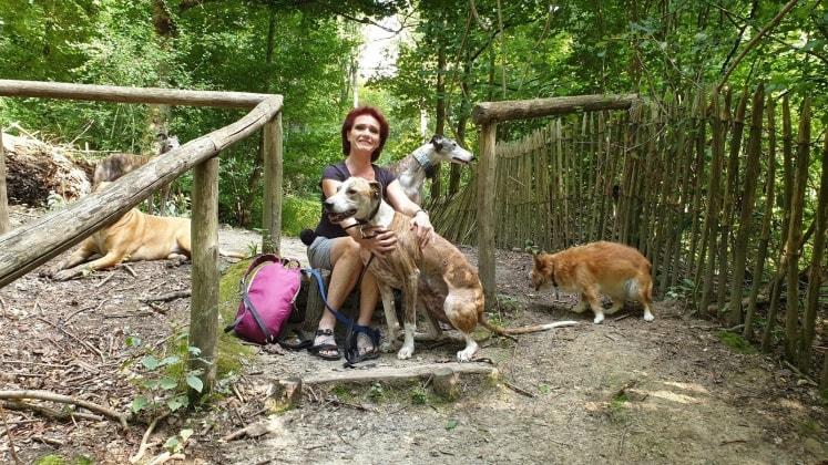 Angie in Sint pieters leeuw back image