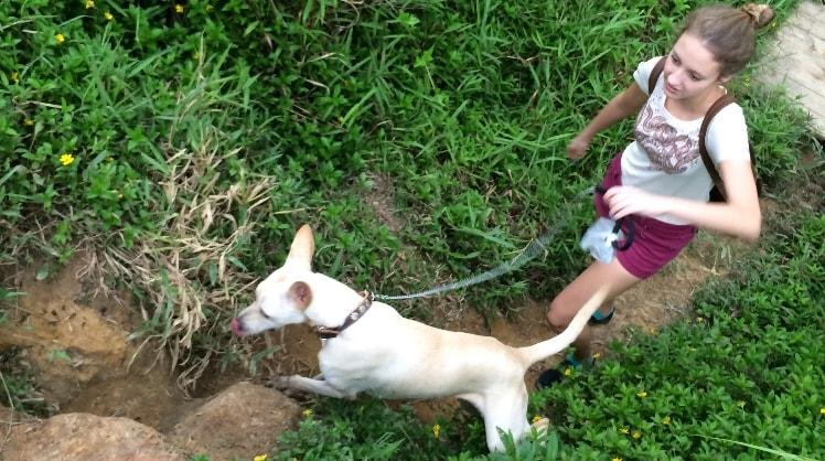 Louisa in Singapore back image