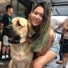 Joey offers Dog sitting near Jurong West